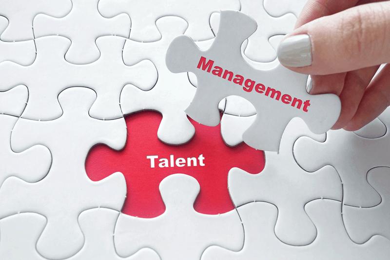 Das Bild zeigt ein Puzzle, in dem das Wort Management auf das Wort Talent passt. Talent Management im War for Talents.